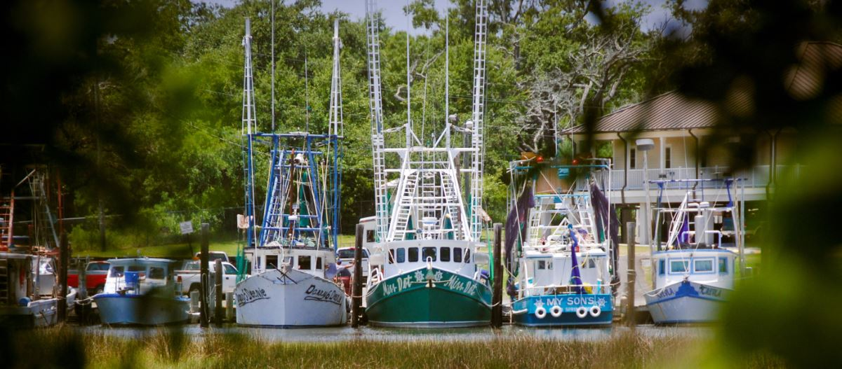 Shrimp boats cropped